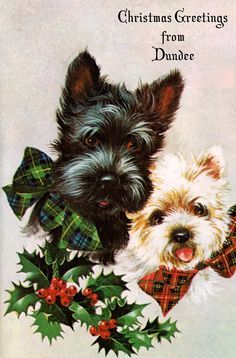 Vintage Christmas card from Dundee, Scotland with Scottish terriers / Scotty dogs
