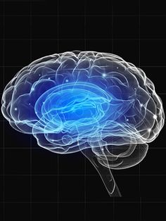 Brain Pathways for Gambling Addiction Similar to Substance Abuse | Psych Central News