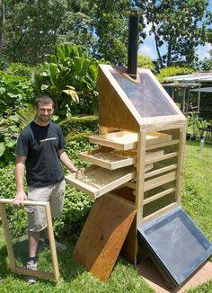 http://ntbg.org/breadfruit/resources/cms_uploads/Max_w_solar_dryer.jpg