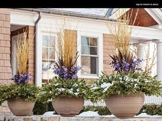 Winter containers.