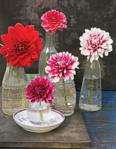 Less Is More  Place single blooms of dramatic flowers, such as dahlias, into individual vases similar in style. Vary the heights of your containers and group in uneven numbers. TIP: Make glass sparkle. Nothing works better to clean glass than a simple eco-friendly solution of vinegar and water. Use a bottle brush for stubborn stains