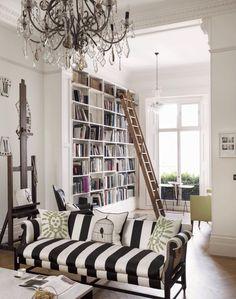 book shelves + ladder