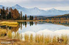 Улаганский перевал, озеро Киделю, Горный Алтай.