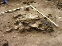 Livestock pens approximately 5,000 years old in Spain