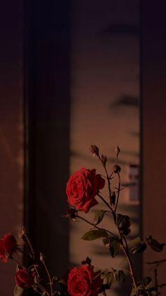 Trendy Wallpaper f r Android 038 iPhone Bildschirm sperren Wallpaper Bildschirm sperren Wallpaper Backgrounds Water Trendy Wallpaper f r Android 038 iPhone Bildschirm sperren Wallpaper Bildschirm sperren Wallpaper Backgrounds Water Hello ToDay nbsp hellip Tumblr Wallpaper, Diy Wallpaper, Trendy Wallpaper, Pretty Wallpapers, Flower Wallpaper, Wallpaper Iphone Vintage, Aztec Wallpaper, Unique Wallpaper For Iphone, Wallpaper Quotes