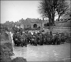 24 Nov 1917; 235th Brigade (47th Divisional Artillery) watering their horses in captured Flesquieres. Battle of Cambrai. © IWM (Q 6320)