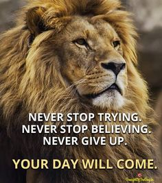 68 Motivational Inspirational Quotes For Success 48 Motivational quotes to be successful in any field such as business,life,gym,job or as a student. Badass Quotes, Good Life Quotes, Inspiring Quotes About Life, Wisdom Quotes, Success Quotes, Great Quotes, Me Quotes, Qoutes, Best Quotes Of All Time