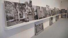 agosto-2012-firenze-e-biennale-arch-venezia-1671.jpg (640×360)
