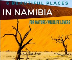 best places to visit in Namibia for nature and African wildlife lovers