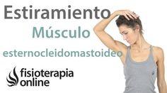 Elestiramiento del esternocleidomastoideoes fundamental para el tratamiento de muchos problemas cervicales como lacervicalgia y cervicobraquialgia.