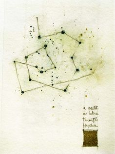 "Luisa Sartori : Artwork : go to ""Seeds & Stars"" images"