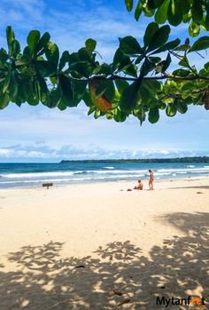 caribbean and pacific coast of Costa Rica - reasons to visit the caribbean
