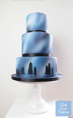 Night Sky Wedding Cake, all decoration Airbrushed and Hand Painted by Bath Cake Company, set up at Babington House