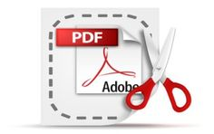 how to edit pdf files without adobe acrobat Good To Know, Did You Know, Technology Hacks, Adobe Acrobat, Interesting Facts, Teaching Ideas, Fun Facts, Pdf, Letters