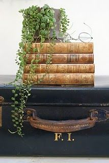Tabletop display using old books, suitcase and a plant.