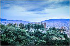 Photo Contextus  ©Pablo Felipe Perez Goyry: 26 Multicolor Photography - 26 Fotografía Multicol...
