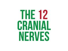 (3) Dysphagia Cafe Unplugged: R&A - The 12 Cranial Nerves - YouTube