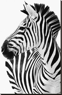 Find zebra stock images in HD and millions of other royalty-free stock photos, illustrations and vectors in the Shutterstock collection. Thousands of new, high-quality pictures added every day. Zebra Painting, Zebra Art, Zebras, Collage Mural, Animal Print Wallpaper, Stretched Canvas Prints, Black And White Photography, Illustrations, Find Art