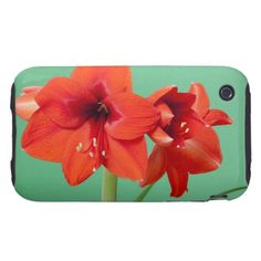 Amaryllis flowers on a green background iPhone 3 tough cases $47.95