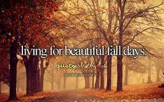 Fall♡