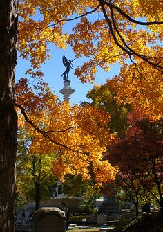 A beautiful photo of our area's stunning #autumn #colors and the Elijah P. Lovejoy #Monument   #Alton, #Illinois #attractions #thingstosee #Midwest #travel #ExploreGreatRivers