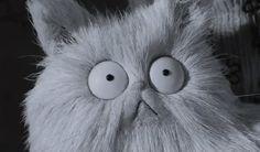 Frankenweenie cat