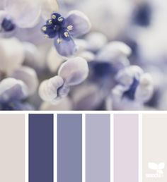{} Tonalidades flora imagen a través de: @myfrenchcountrygarden
