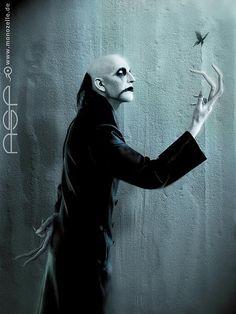 See ASP pictures, photo shoots, and listen online to the latest music. Dracula, Frankenstein, Dark Fantasy, Fantasy Art, Gothic Bands, Vampire Art, Vampire Skull, Vampire Masquerade, World Of Darkness