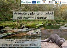 """Cantabria: """"Planta un árbol para nuestras nutrias"""". Este domingo en Rubalcaba."""