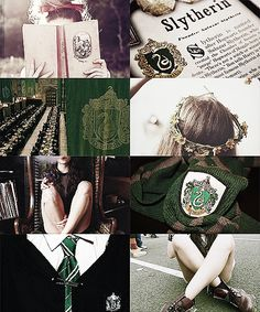It's such a pity every Harry Potter House test I take never places me in Slytherin...