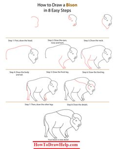 Learn how to draw a Bison in this step by step tutorial for kids.  Visit for details: http://howtodrawhelp.com/how-to-draw-a-bison/