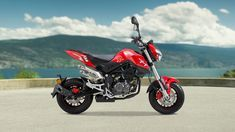 14 Best mini images | Grom bike, Honda bikes, Honda motorcycles