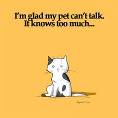 I'm glad my pet can't talk. It knows too much... 40 Funny Doodles For Cat Lovers and Your Cat Crazy Lady Friend grumpy tom talking nyan instagram pinterest facebook twitter comic pictures youtube and like OMG! get some yourself some pawtastic adorable cat shirts, cat socks, and other cat apparel by tapping the pin!