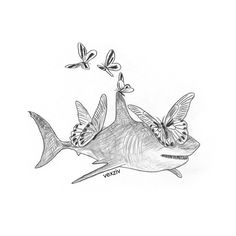 shark #drawing #illustration #art #sketch #sea #shark butterfly