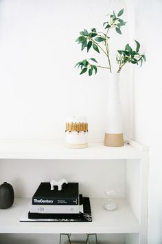 According to animal loverEva Goicochea,nothingis precious when you have five rescued pets. Eva, the Los Angeles-based founder ofeg° studio, a branding and web design practice, and her husband Ian Goicochea, a mechanical engineer, created a clean, thoughtful interior that works with their structure's modern exterior — while also keeping up with the pace of a 'zookeeping' life. The team fromThe Platform Experimenthelped the couple strike a balance between the natural textures and…
