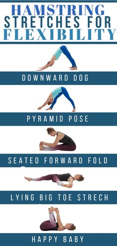 yoga stretches for flexibility,stretching exercises for beginners,workout flexib. Yoga Fitness, Senior Fitness, Health Fitness, Biceps, Flexibility Workout, Leg Flexibility Stretches, Stretches For Tight Hamstrings, Hamstring Stretches, Good Leg Stretches