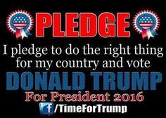 I pledge... #Trump2016 #ColdAnger #MakeAmericaGreatAgain