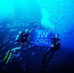 Shared IG@jw_witnesses