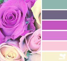 Paleta de Colores-la combinacion perfecta