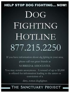 877 215 2250    Dog Fighting Hotline.  Write the number down.  Share it with everyone.