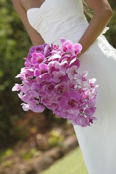 Flower File: Tropical Orchid Wedding Bouquets :) These are the flowers I carried at Sandals when we got married.