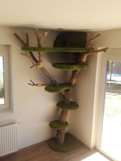 Diy Cat Tree, Cat Houses, Ladder Decor, Home Decor, Tree Structure, Luxury, Decoration Home, Room Decor, Home Interior Design