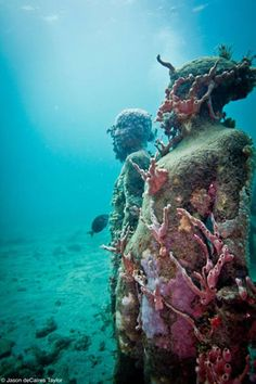 Keeppy :: Underwater sculpture by Jason Taylor