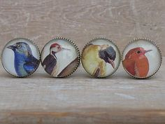 Set Of Four Brass And Glass Bird Knobs