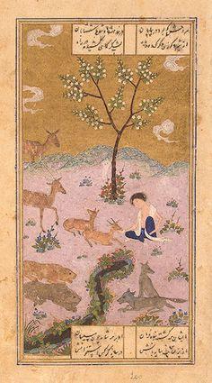 majnun in the desert 1431
