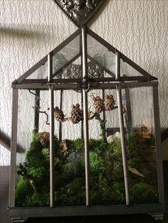 Mini drivhus, bygget op med mos og grene.   Uglerne er lavet kogler.