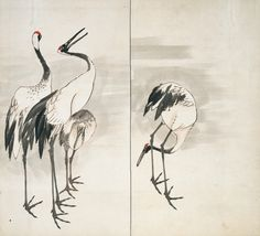 Burke Collection | Family of Cranes