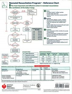 nrp wall chart, 7th edition - aap | nursing | pinterest ... uml 2 process flow diagram nrp flow diagram #14