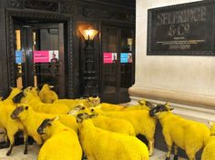 Google Image Result for http://www.ecouterre.com/wp-content/uploads/2010/10/selfridges-yellow-sheep-wool-week-1-537x402.jpg