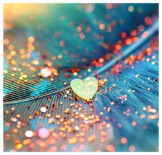 Beautiful Memories Are Silently Kept Of An Aunt We Loved Dearly And Will Never Forget - In Loving Memory Cards For Aunt Monica Matos, Glitter Carnaval, Sympathy Poems, Milan Kundera, Aunt Quotes, I Love Heart, Happy Heart, Sparkles Glitter, Sunset Photos